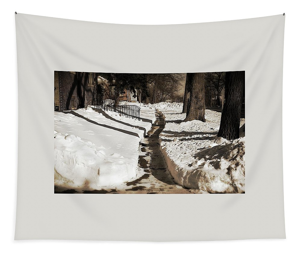 Landscape Tapestry featuring the photograph Snow Paths And Winter Shadows by Frank J Casella