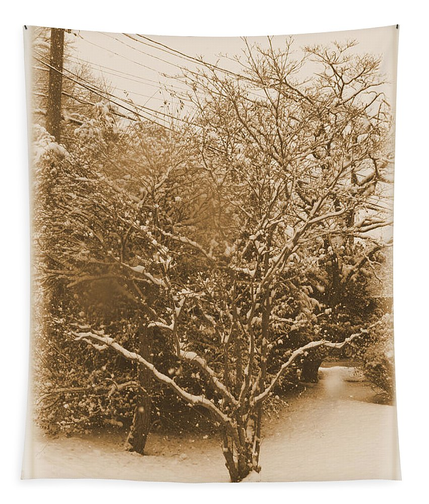 Heritage Tapestry featuring the photograph Snow Scene by Robert McCulloch