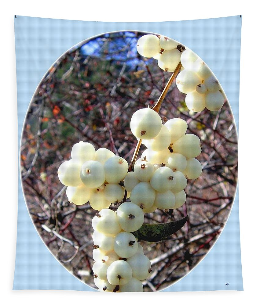 #snowberrycluster Tapestry featuring the photograph Snowberry Cluster by Will Borden