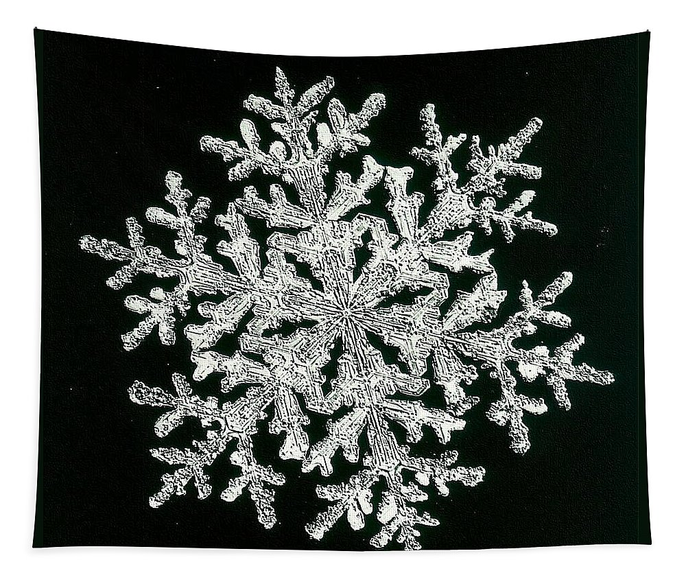 Snowflake Tapestry featuring the photograph snowflake I by Dragica Micki Fortuna