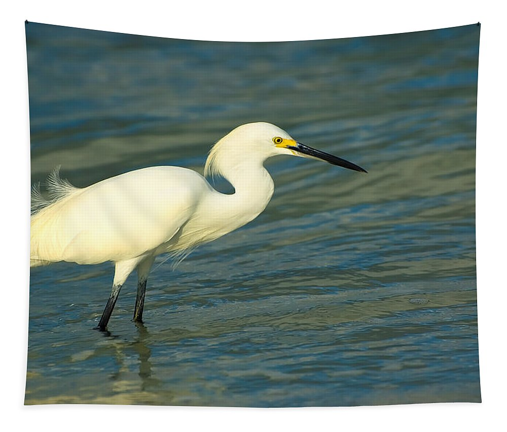 Animal Tapestry featuring the photograph Snowy Egret by Rich Leighton