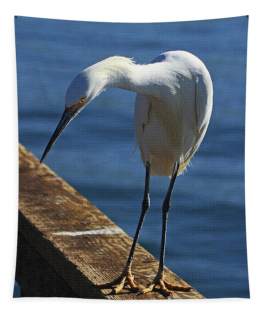 Snowy Egret That Minnow Will Be Fine Tapestry featuring the photograph Snowy Egret That Minnow Will Be Fine by Tom Janca