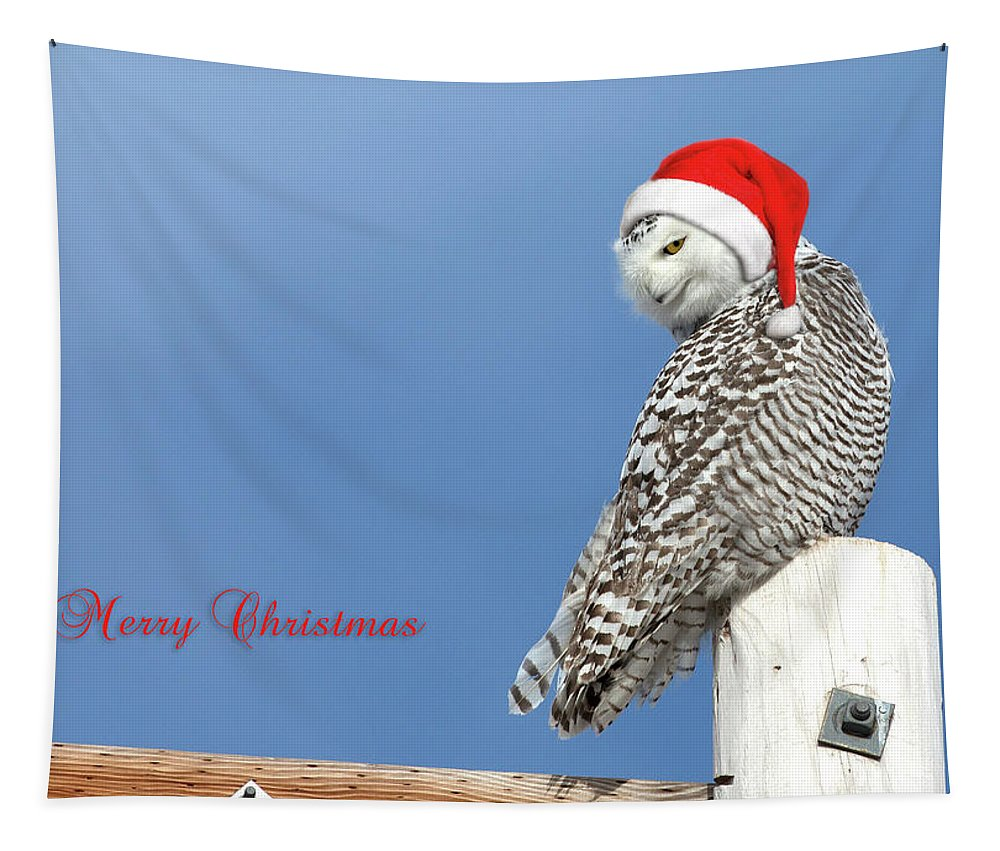 Snowy Owl Tapestry featuring the photograph Snowy Owl Christmas Card by Everet Regal