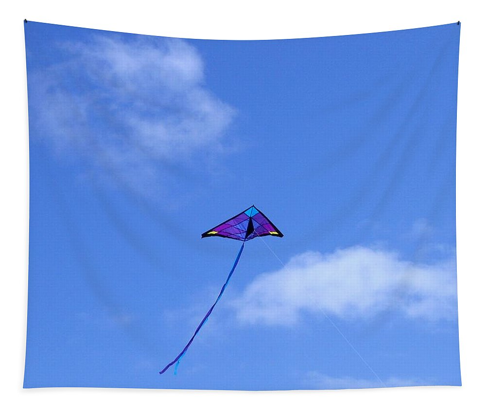 #soaring Tapestry featuring the photograph Soaring by Will Borden