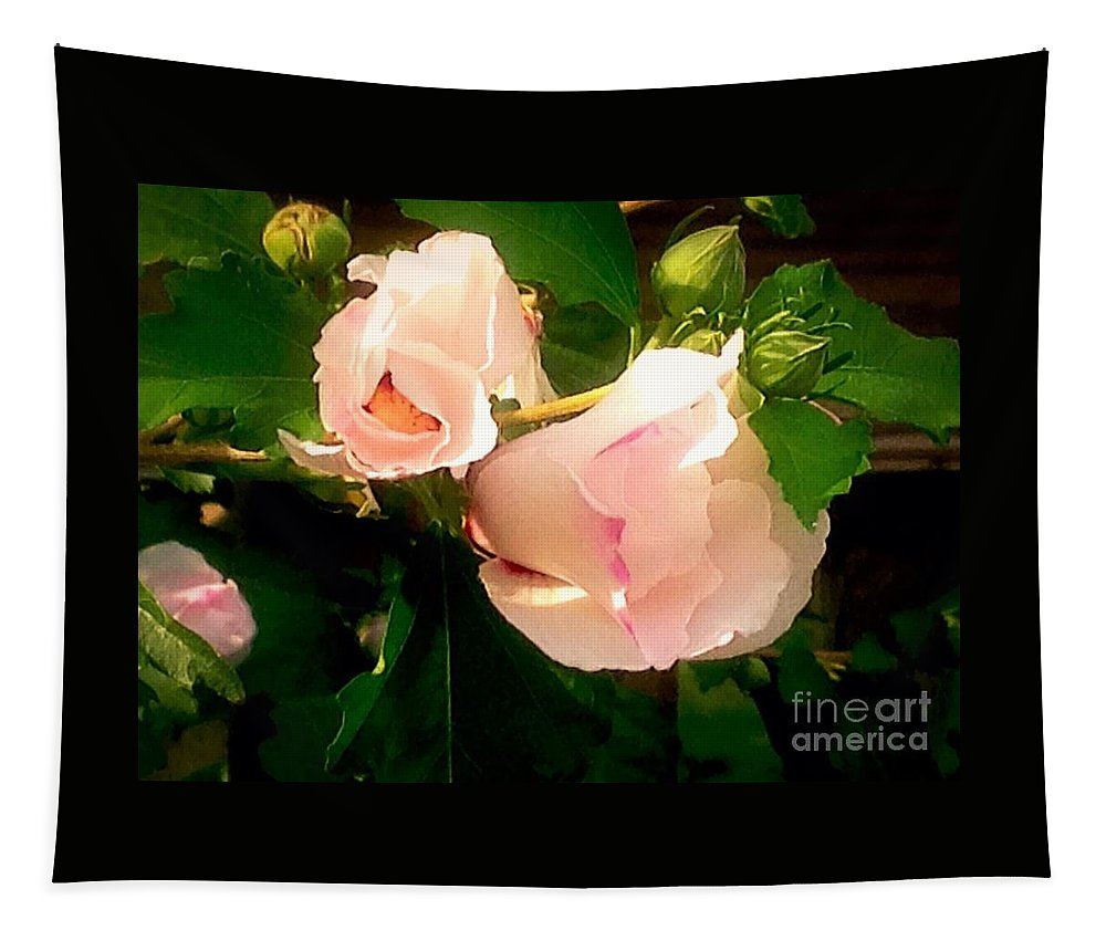 Photography Tapestry featuring the photograph Soft And Pretty by Debra Lynch