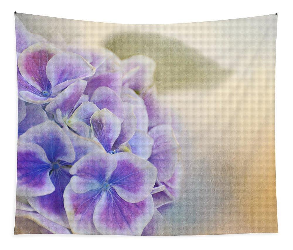 Hydrangea Tapestry featuring the photograph Soft Hydrangeas On Peach by Lynn Bauer