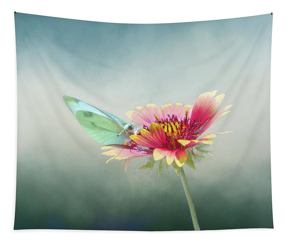 Isolated Tapestry featuring the digital art Soft Landing by Terry Davis