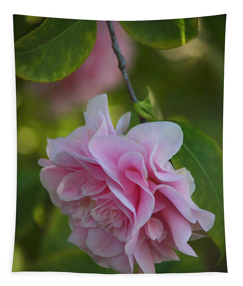 Beautiful Tapestry featuring the photograph Soft Pink Camellia by Teresa Wilson