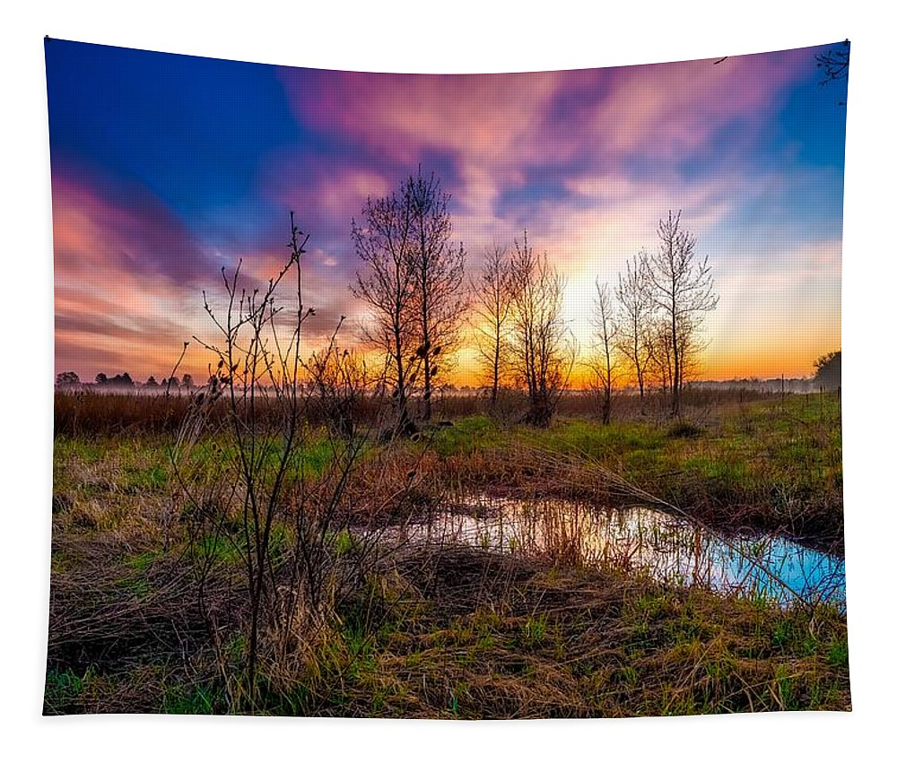 Sunrise Tapestry featuring the photograph Soft Pinks by Jeremy Thomas