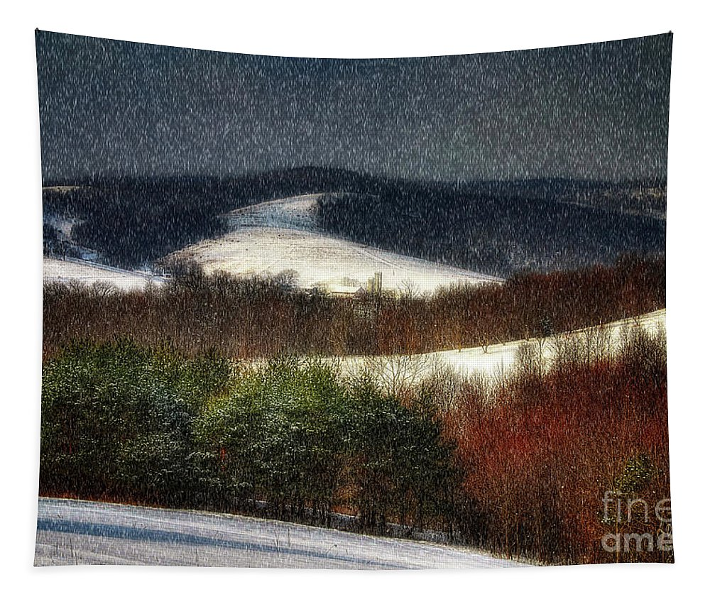Snow Tapestry featuring the photograph Softly Sifting by Lois Bryan