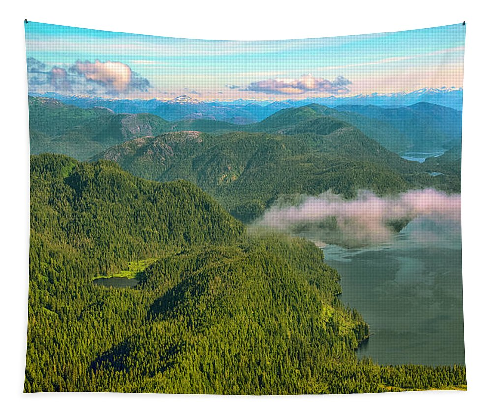 Alaska Tapestry featuring the photograph Over Alaska - June by Madeline Ellis