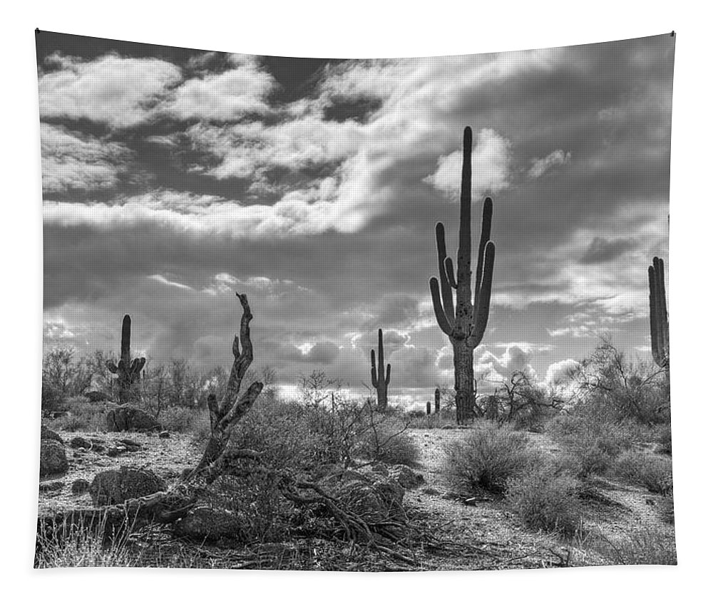 Sonoran Desert Tapestry featuring the photograph Sonoran Desert In Black And White by Saija Lehtonen