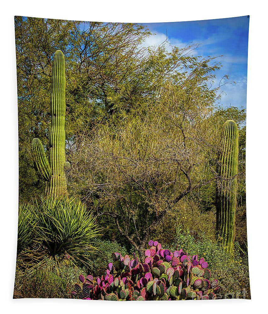Jon Burch Tapestry featuring the photograph Sonoran Holiday by Jon Burch Photography