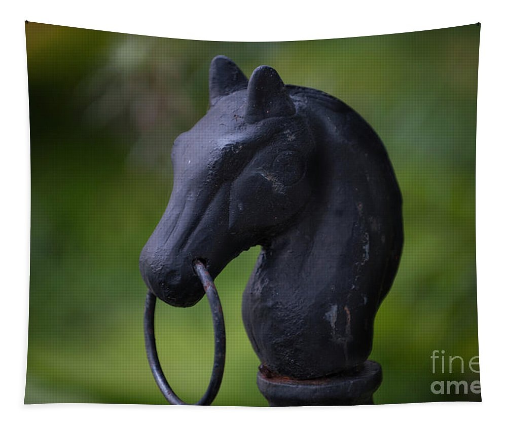 Horse Tapestry featuring the photograph Southern Horse Head by Dale Powell