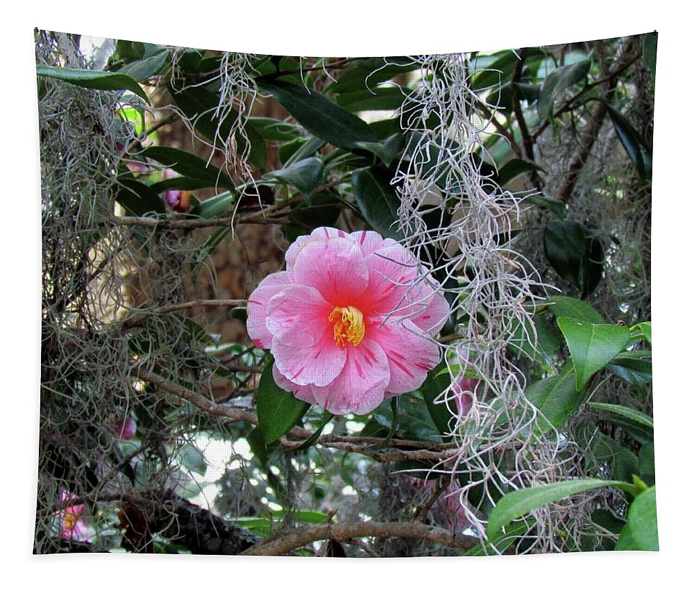 Camellia Japonica Tapestry featuring the photograph Southern Pink Camellia by Cynthia Guinn