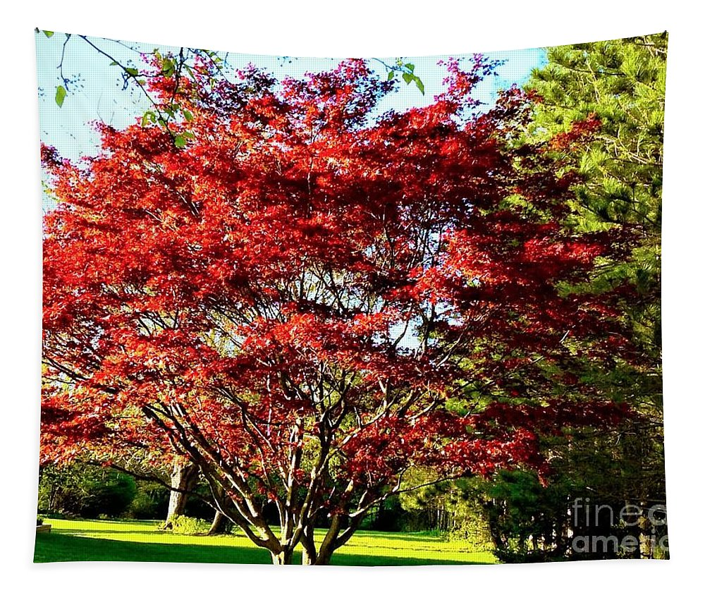 Photography Tapestry featuring the digital art Sparkling Japaneese Maple Tree by Debra Lynch