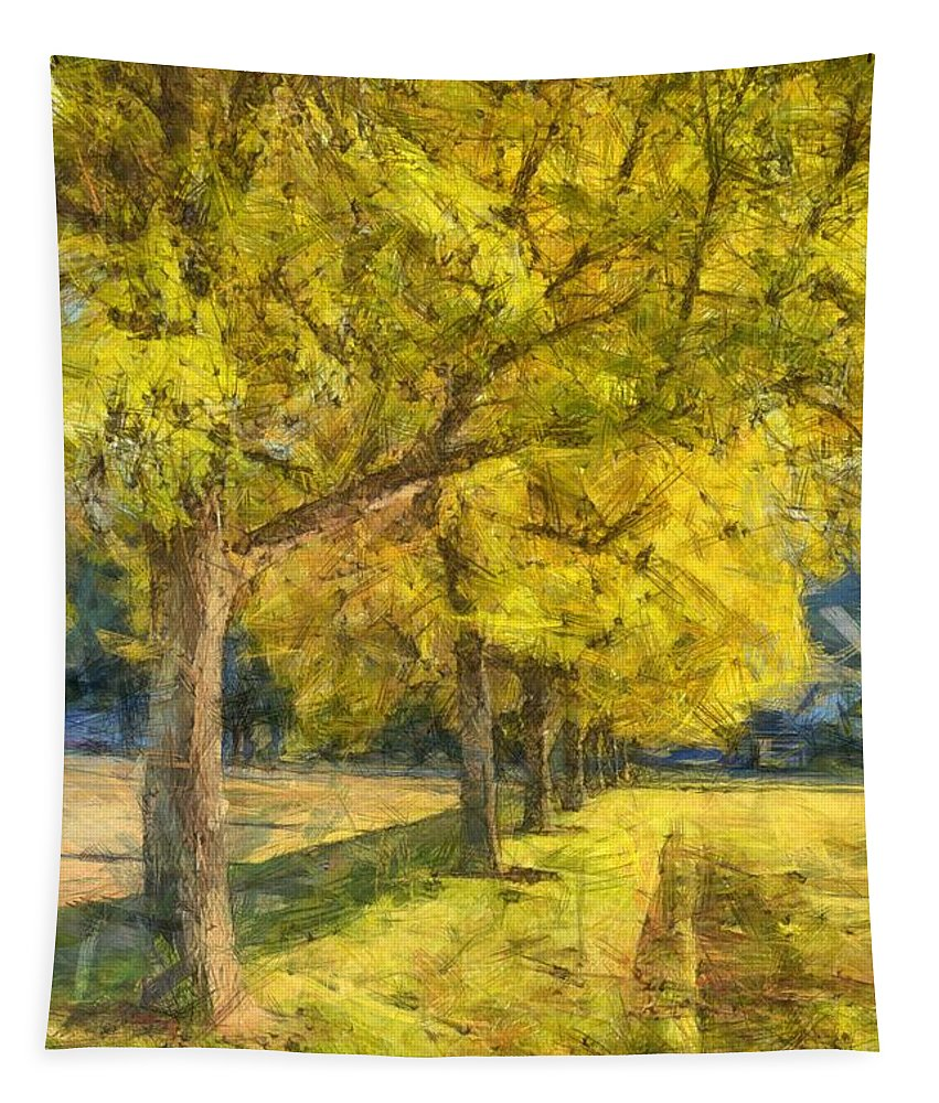 Fall Tapestry featuring the photograph Spectacular Fall Foliage Pencil by Edward Fielding