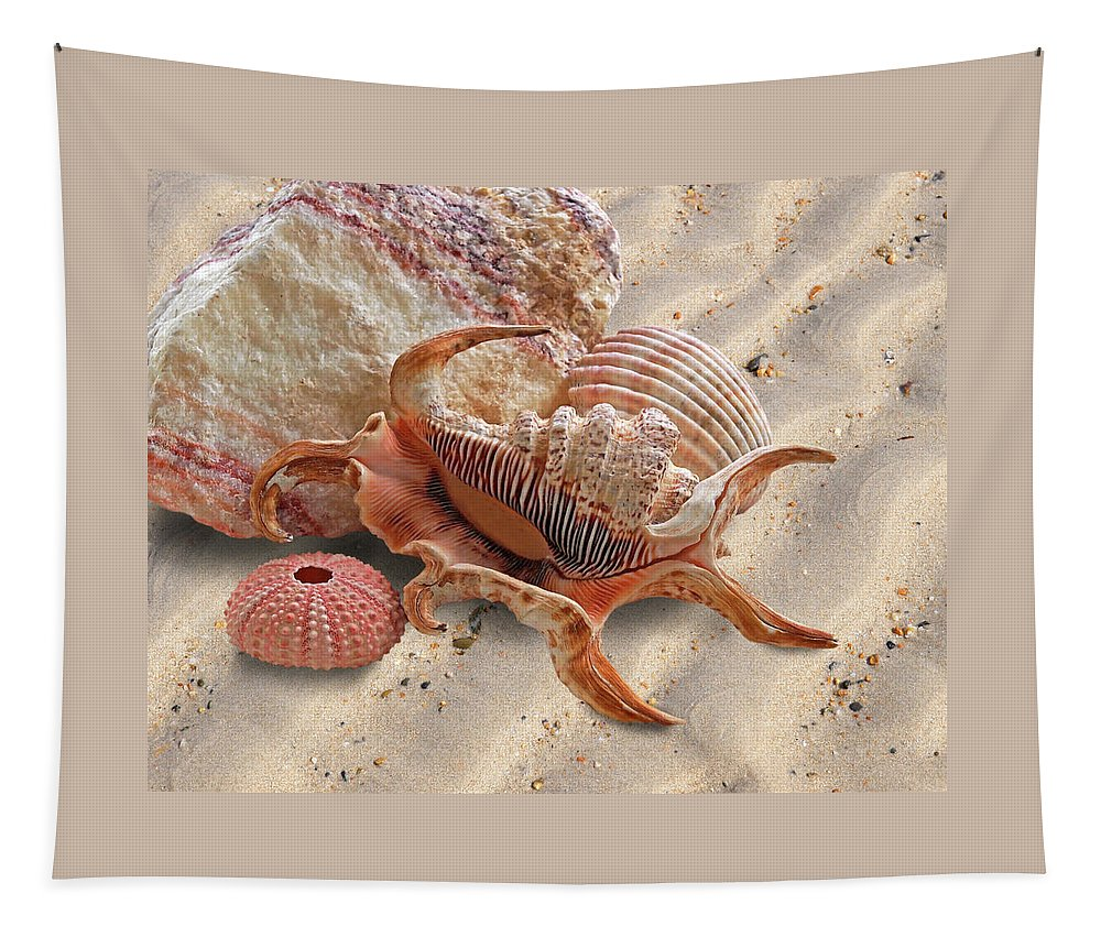 Sea Shell Tapestry featuring the photograph Spider Conch Shell On The Beach by Gill Billington