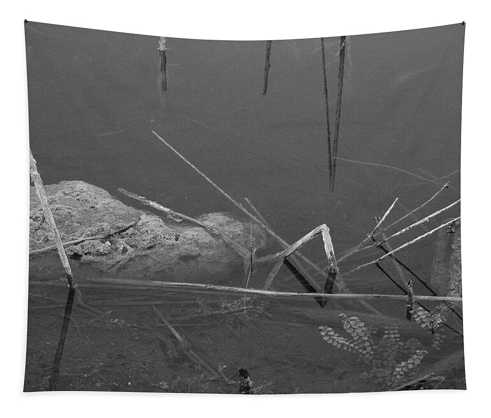 Black And White Tapestry featuring the photograph Spider In Water by Rob Hans