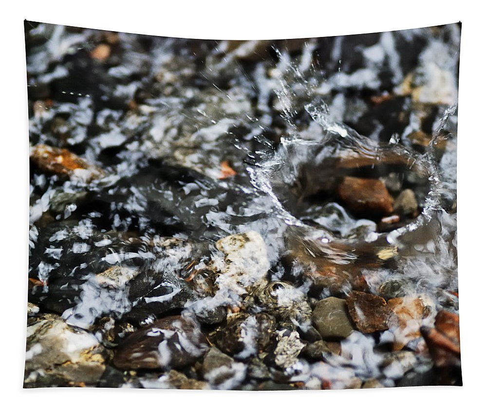 Nature Tapestry featuring the photograph Splash by Susan Capuano