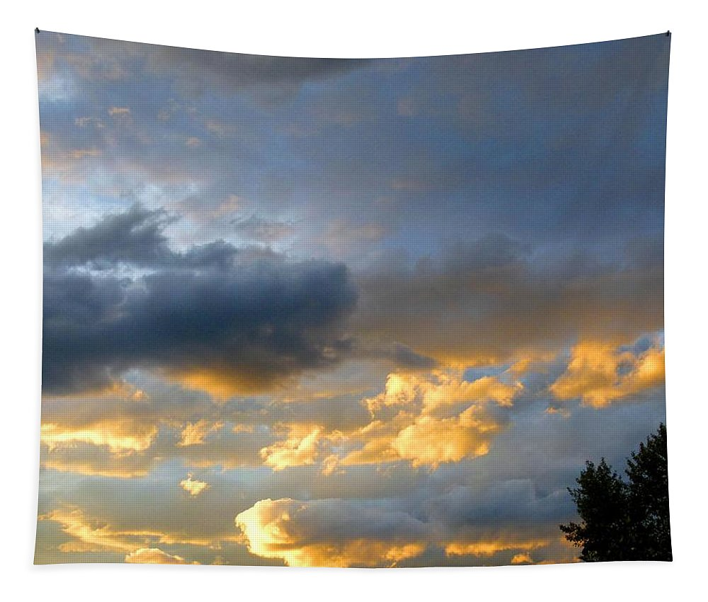 Splendid Cloudscape 1 Tapestry featuring the photograph Splendid Cloudscape 1 by Will Borden