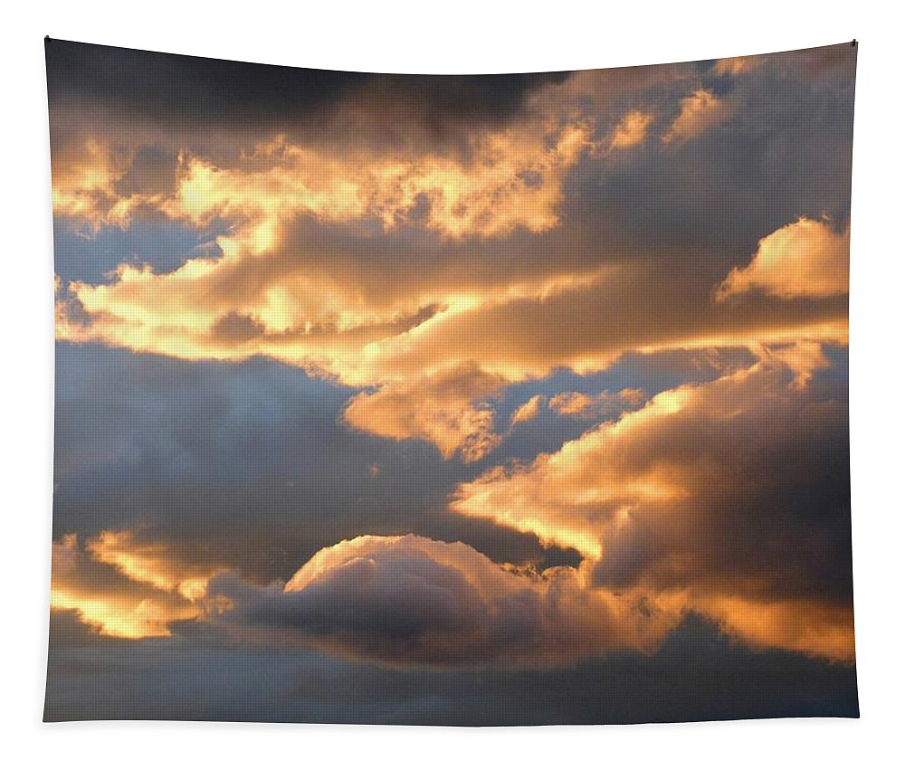 Splendid Cloudscape 2 Tapestry featuring the photograph Splendid Cloudscape 2 by Will Borden