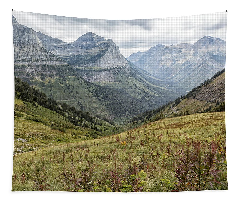 Highline Trail Tapestry featuring the photograph Splendor From Highline Trail - Glacier by Belinda Greb