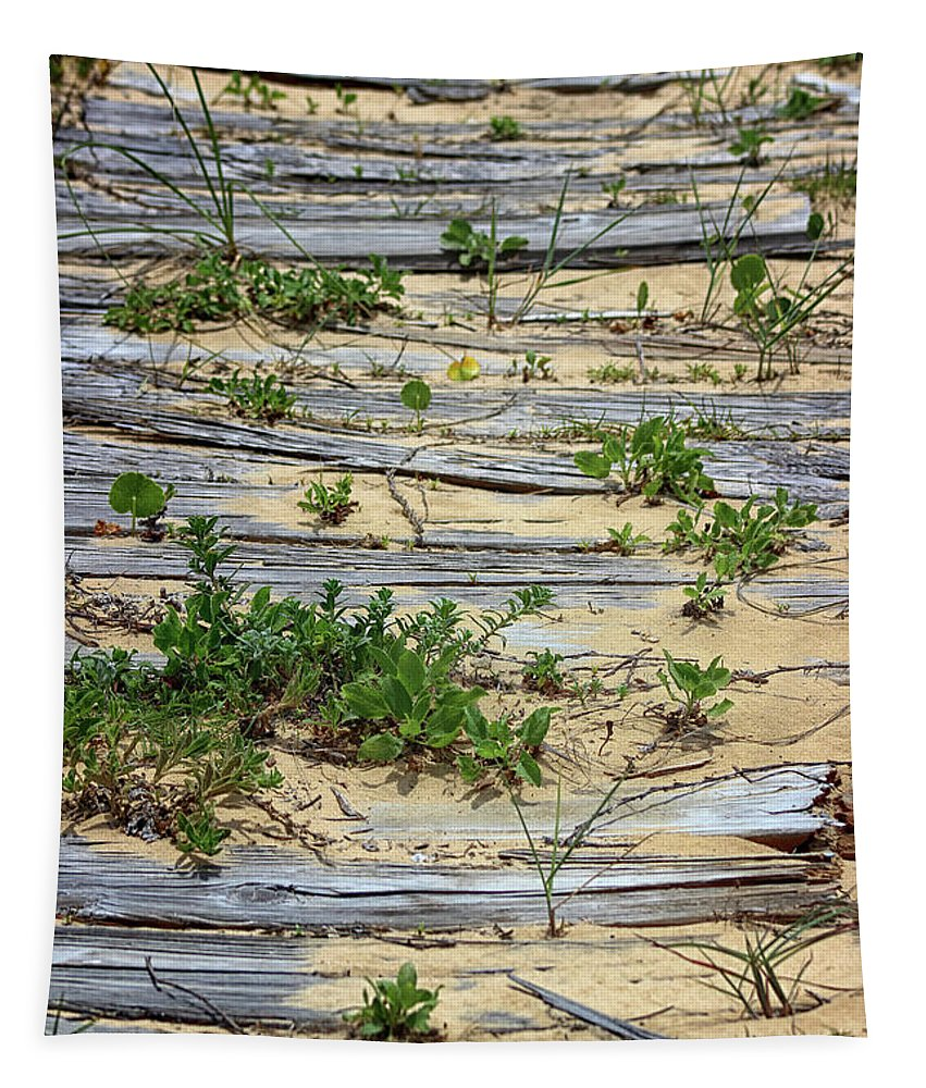 Summer Tapestry featuring the photograph Splinters In The Sand by Karen Adams
