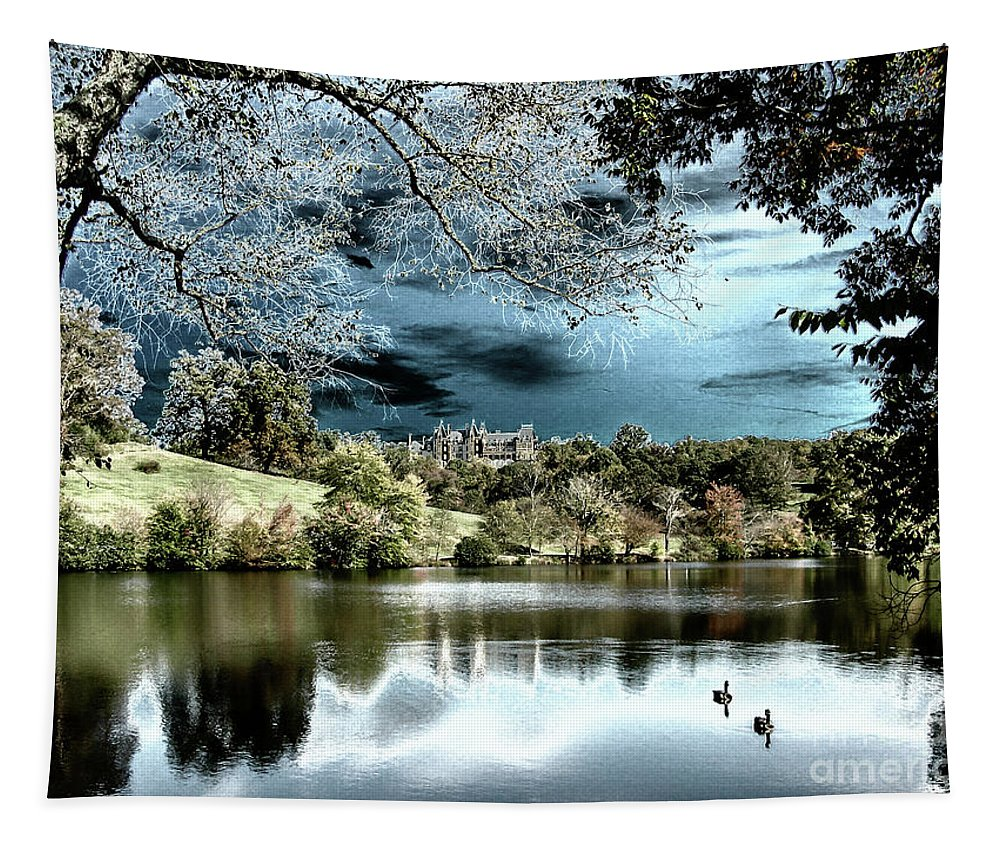 Biltmore Tapestry featuring the photograph Spooky Skies by Dale Powell