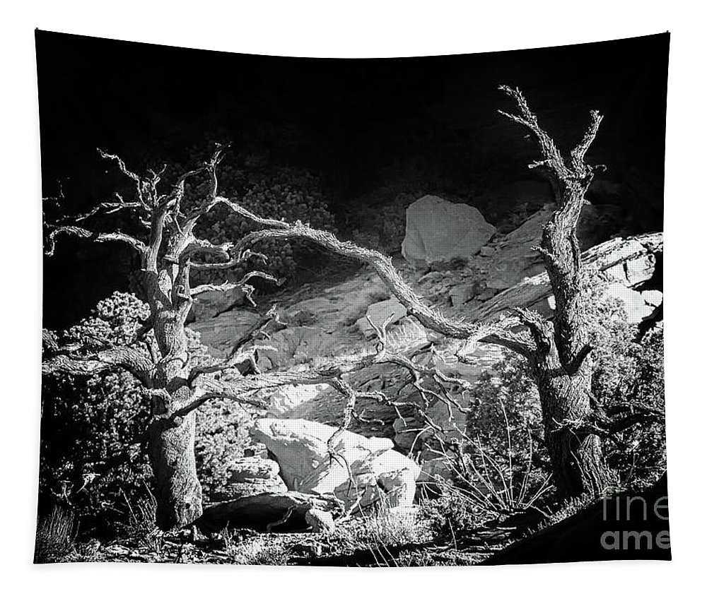 Black And White Utah Landscape Tapestry featuring the photograph Spotlight On The Rim by Jim Garrison