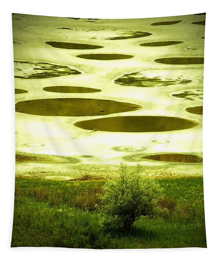 Spotted Lake Tapestry featuring the photograph Spotted Lake by Tara Turner
