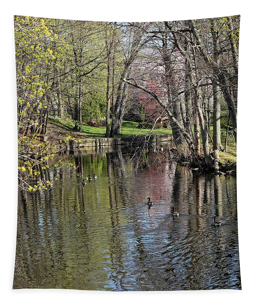 Spring Arrives Tapestry featuring the photograph Spring Arrives by Karol Livote