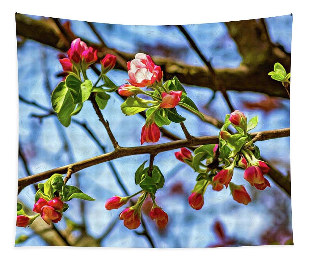Steve Harrington Tapestry featuring the photograph Spring Awakening 3 - Paint by Steve Harrington