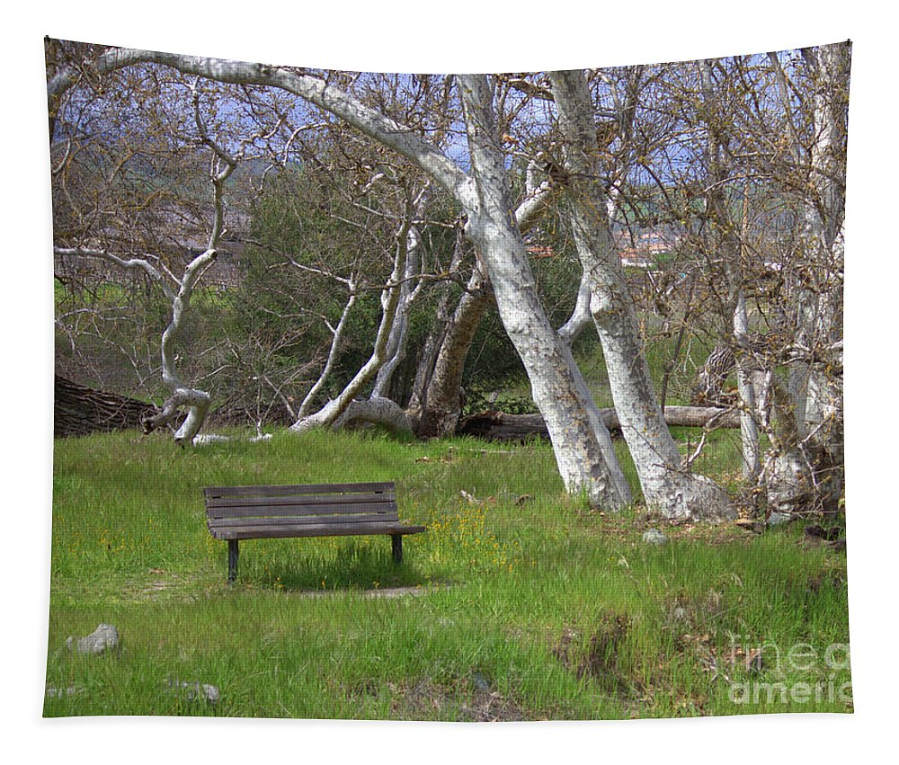 Bench Tapestry featuring the photograph Spring Bench In Sycamore Grove Park by Carol Groenen