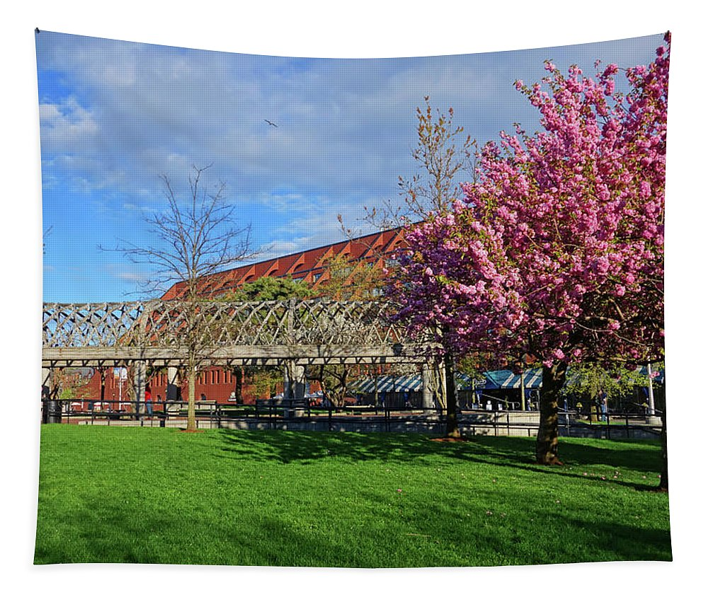 Boston Tapestry featuring the photograph Spring Bloom At Christopher Columbus Park Boston Ma Cherry Blossoms by Toby McGuire