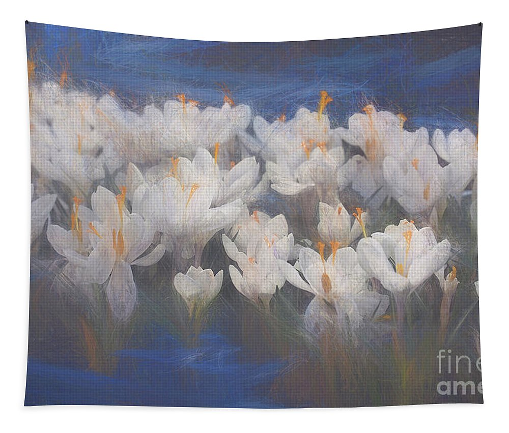 Crocus Tapestry featuring the mixed media Spring Crocuses by Helen White