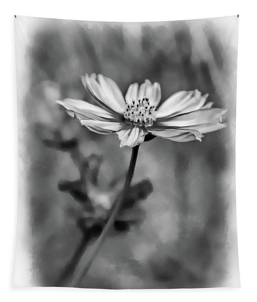 Steve Harrington Tapestry featuring the photograph Spring Desires 2 Bw by Steve Harrington
