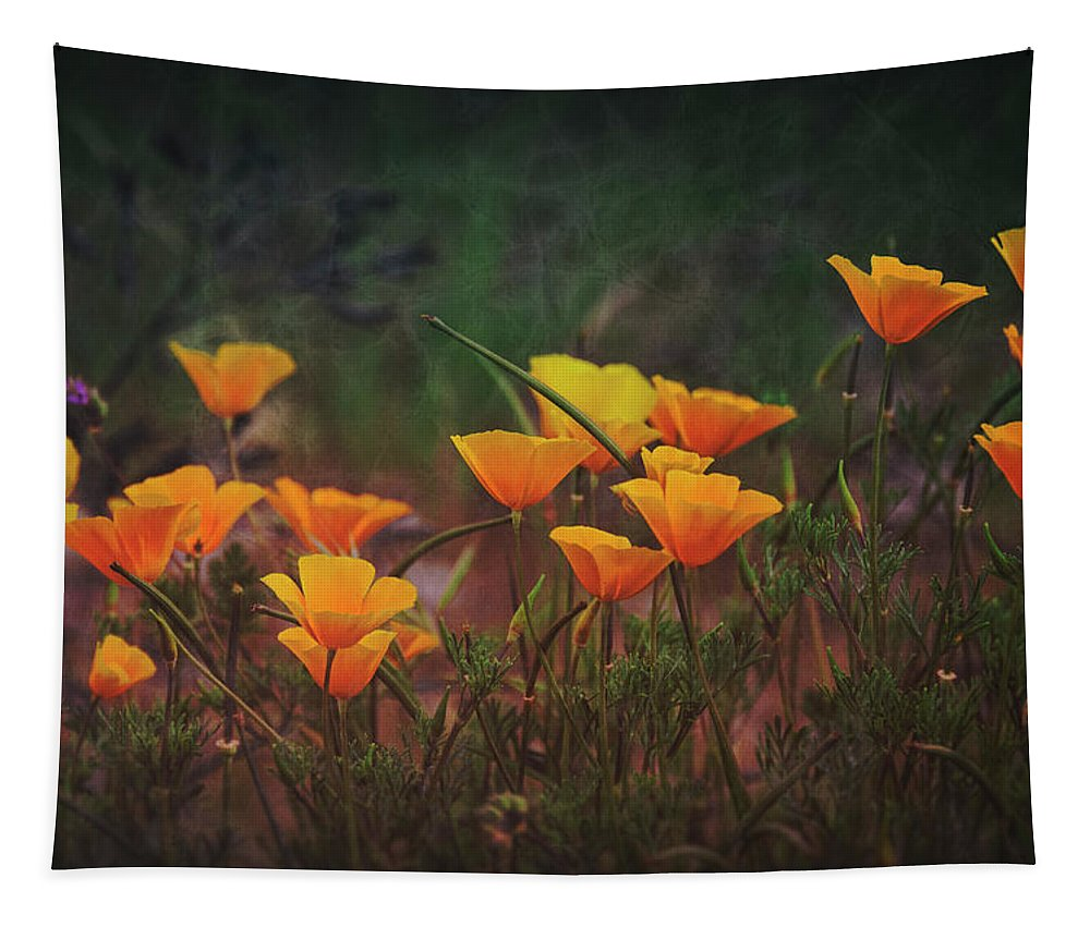 Poppies Tapestry featuring the photograph Spring In A Poppin' by Saija Lehtonen