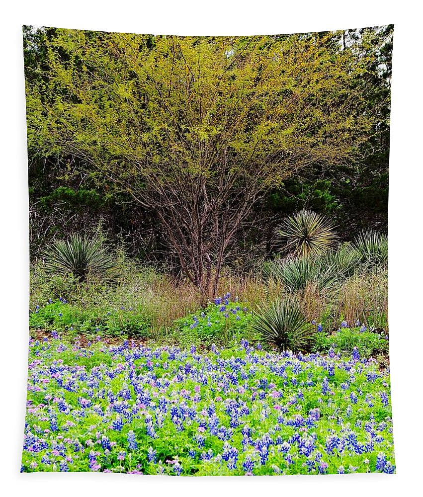 Spring Tapestry featuring the photograph Spring In Texas by Gary Richards