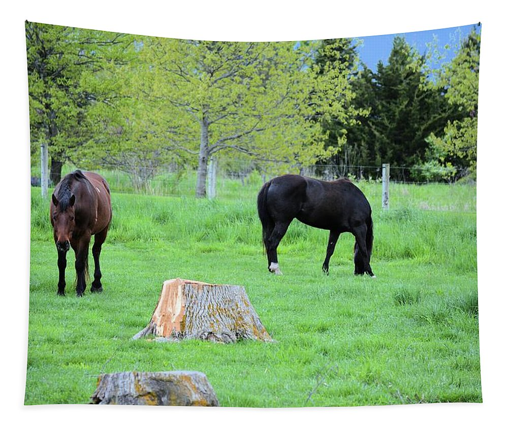 Nature Tapestry featuring the photograph Spring Pastures by Bonfire Photography