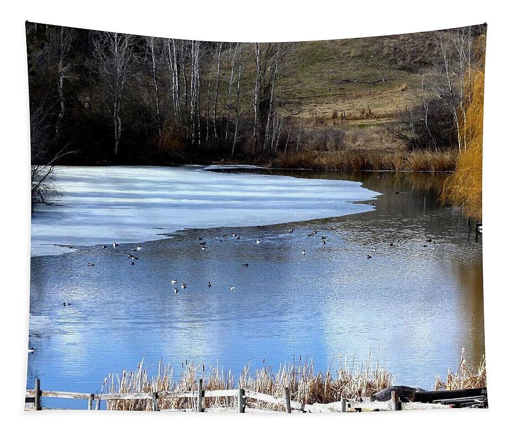 Pond Tapestry featuring the photograph Spring Pond by Will Borden