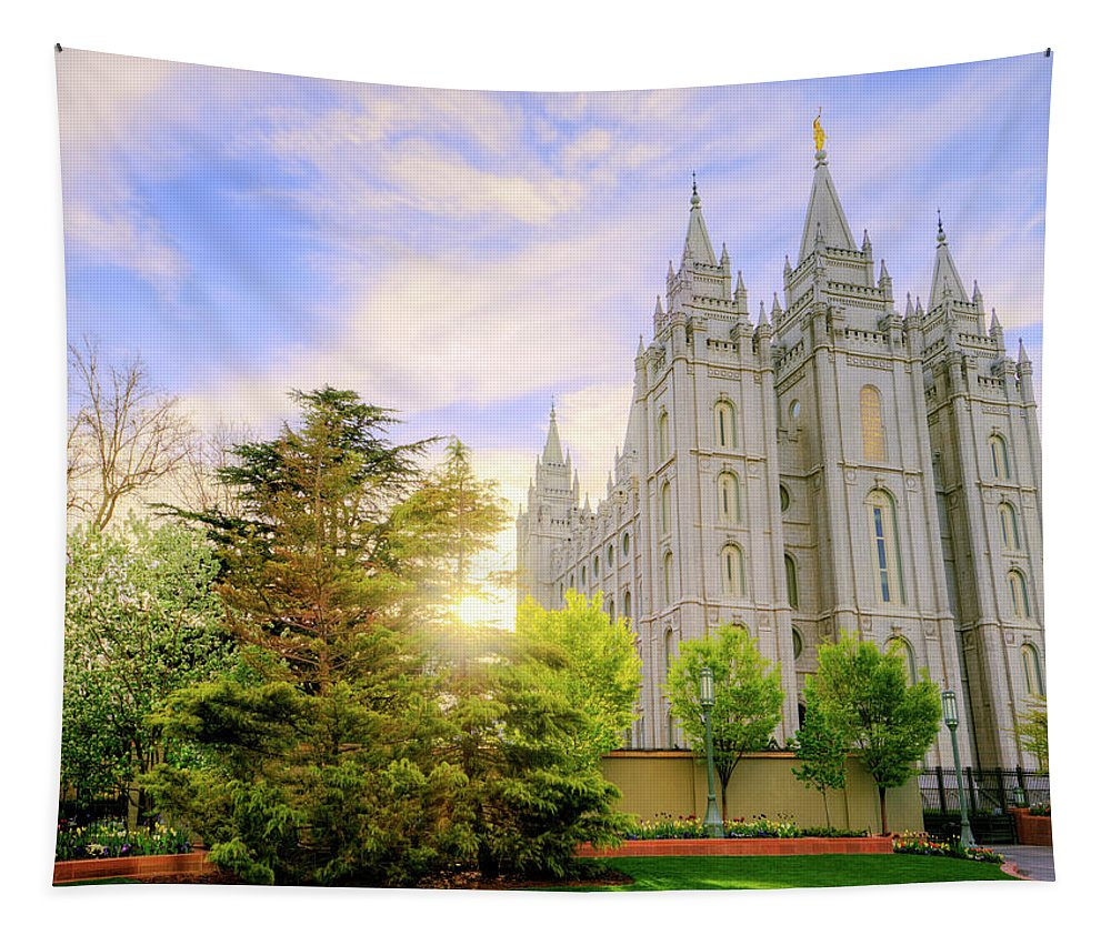 Salt Lake Tapestry featuring the photograph Spring Rest by Chad Dutson