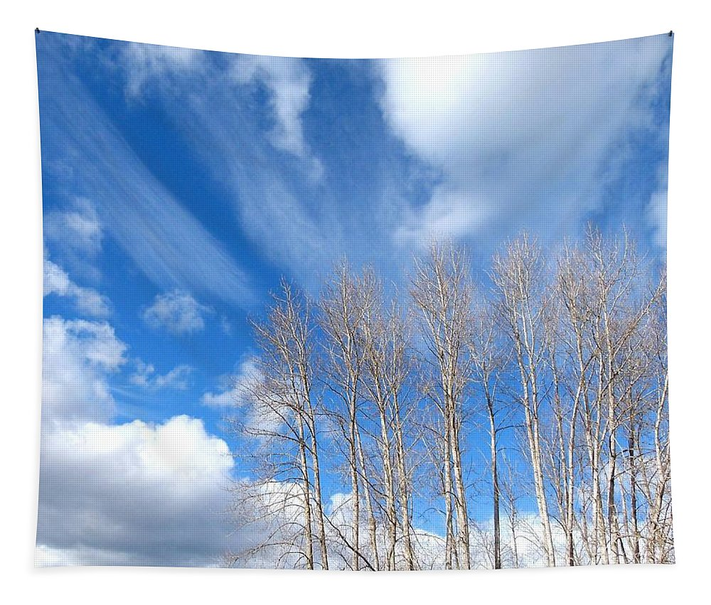Spring Sky Tapestry featuring the photograph Spring Sky And Cotton Trees by Will Borden