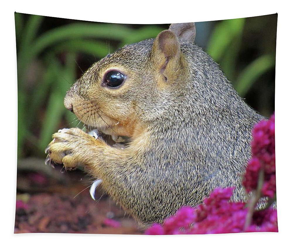 Squirrel Tapestry featuring the photograph Squirrel - Morning Snack 02 by Pamela Critchlow