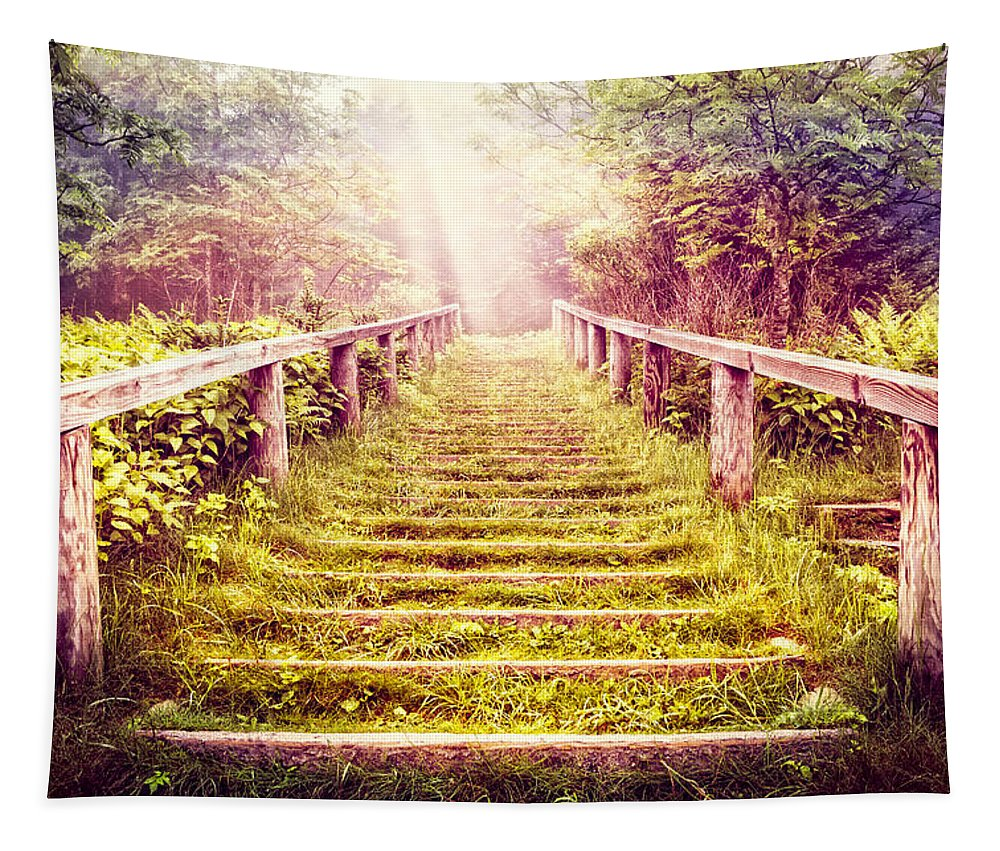 Appalachia Tapestry featuring the photograph Stairway To The Garden by Debra and Dave Vanderlaan