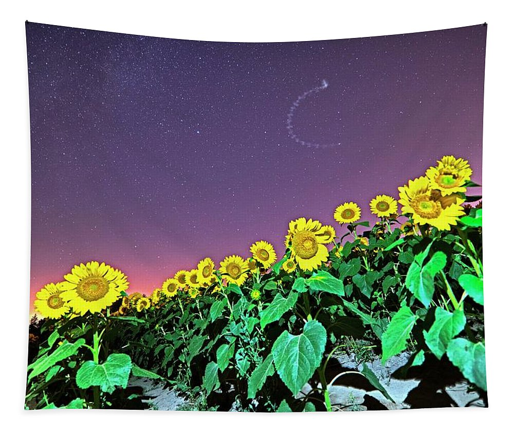 Colby Tapestry featuring the photograph Starry Sky Over Colby Farm Sunflowers Newbury Ma by Toby McGuire