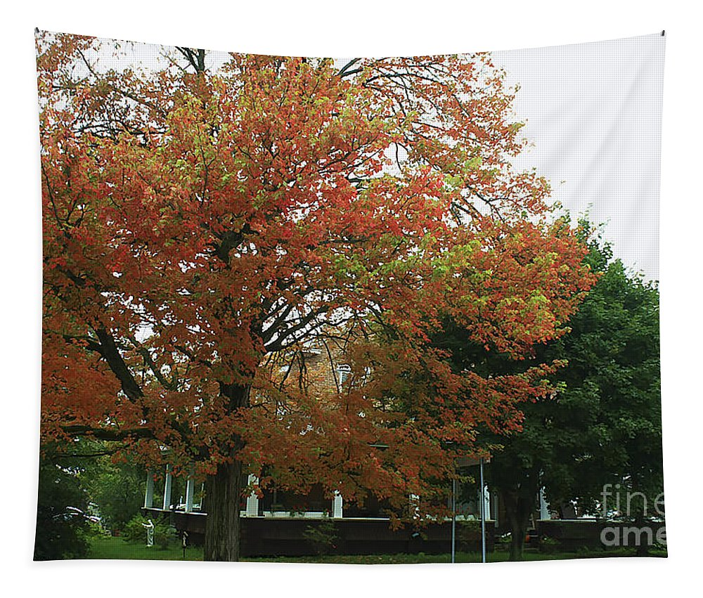 Tapestry featuring the photograph Start Of Autumn by Deborah Benoit
