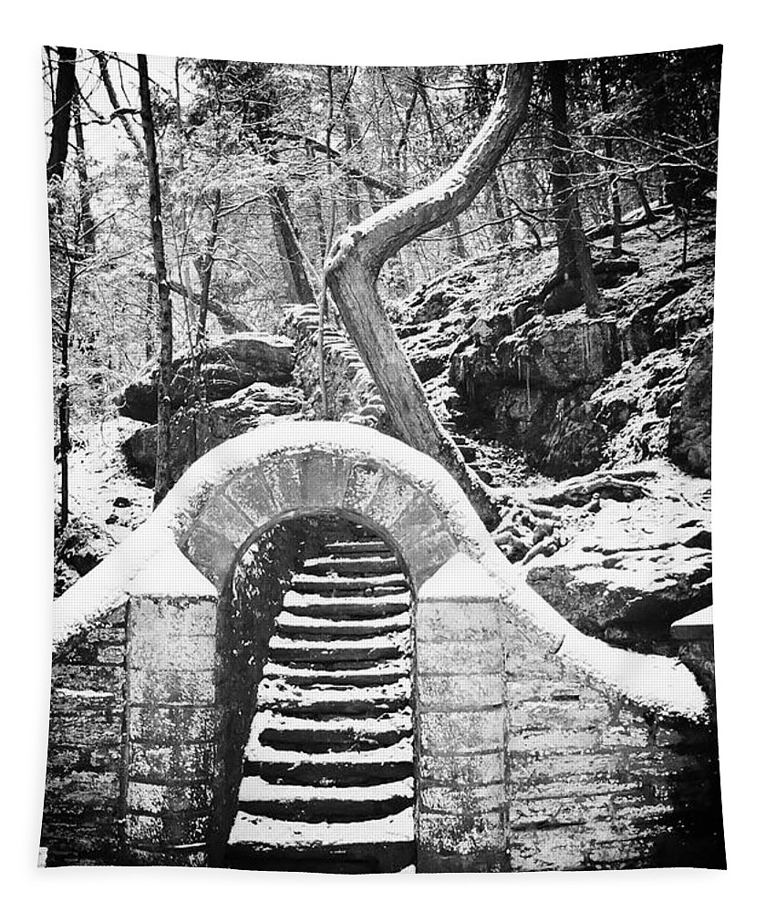 Philadelphia Tapestry featuring the photograph Steps Along The Wissahickon by Bill Cannon