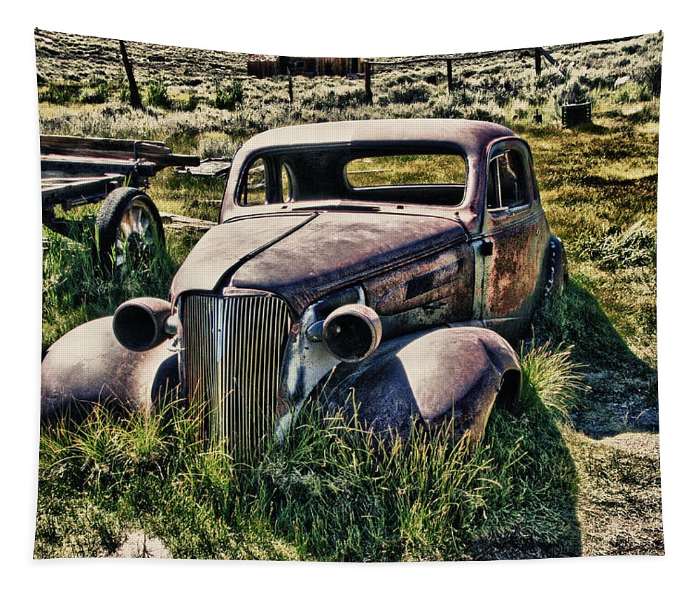 Old Rusty Car Tapestry featuring the photograph Still Standing by Chris Brannen