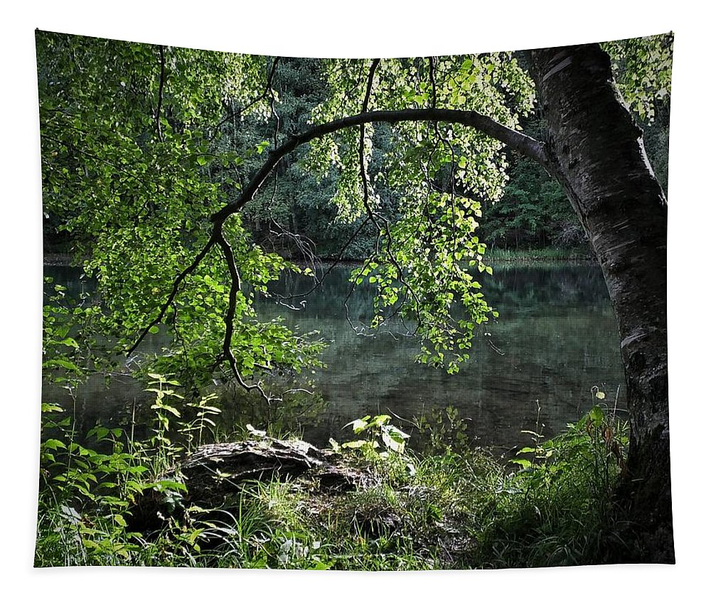 Nature Tapestry featuring the photograph Still Water by Karen Stahlros